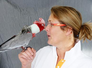 Dr. med. vet. Anja Petersen